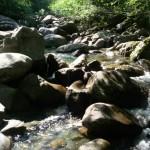 Scorci di un affluente in alta Valsesia