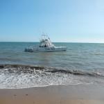 Blue Marlin, eccellente barca da pesca!