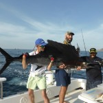 Spinning Sail Fish