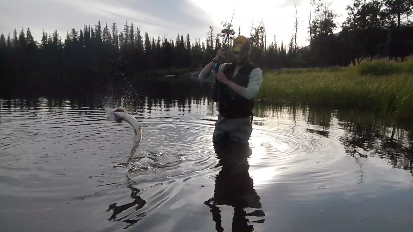 Jumping Pike Fly Fishing