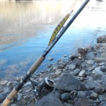 GLoomis Salmon Twin Power e Urban Fishing Lure