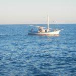 Peschereccio, reti, 30 metri dalla riva...
