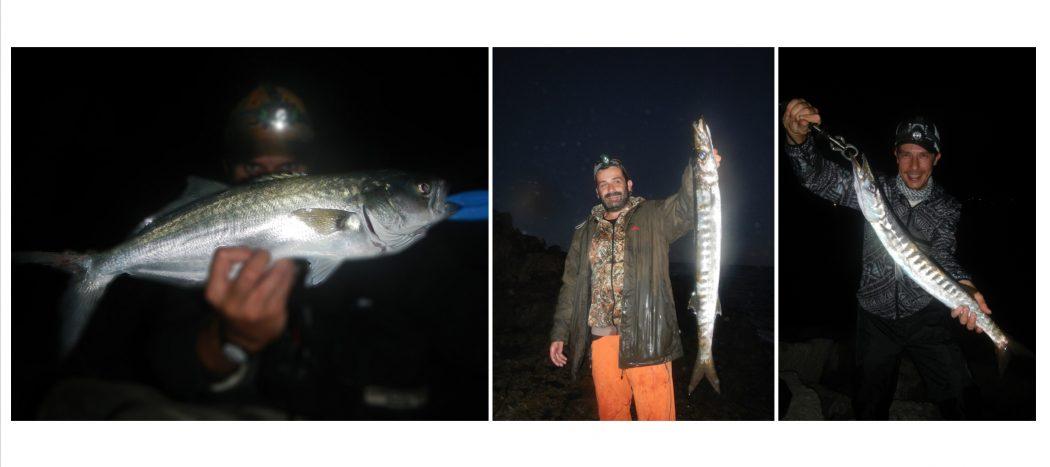 sea_fishing_inshore_spinning