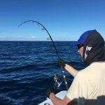 Savio lotta con il Pesce Vela