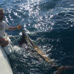 Pesce Vela e Francis 2017