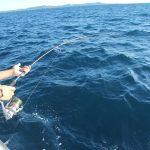 La Coltsniper, stupenda canna Shimano, in piega sul grande Pesce Vela