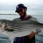 striped_bass_record_pietro_invernizzi_nyc