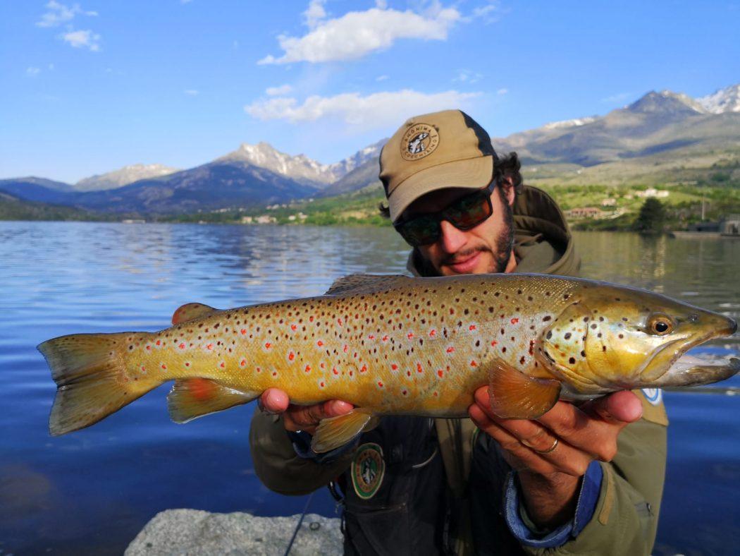 Big brown lake trout Pietro Invernizzi