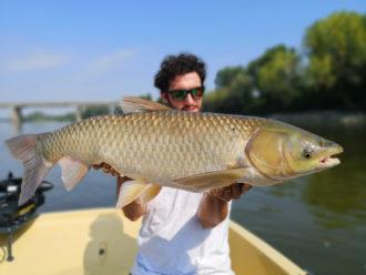 Carpa Amur Pietro Invernizzi Record big fish